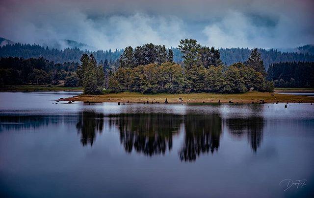 Wonderfully moody day at Mount Rainier National Park . . . #pnw #explorepnw @mountrainiernps #exploremore #mountrainiernationalpark