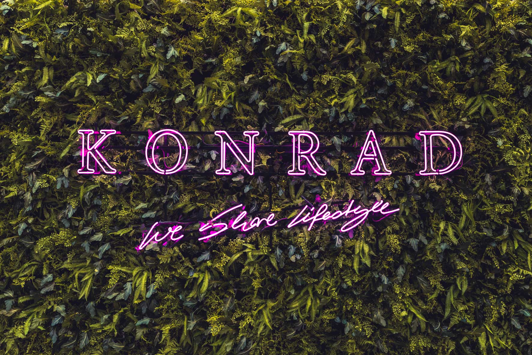 Konrad-lifestyle-art-basel-%22prestige%22-2019-1.jpg