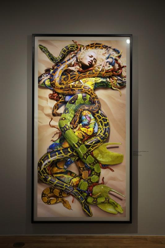 3f-snakes-for-alexander-mcqueen-2009_orig.jpg