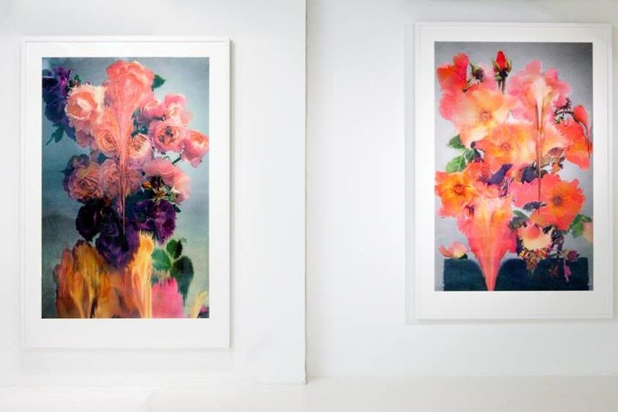 Nick Knight: Flora  SHOWstudio, Bruton Place, London