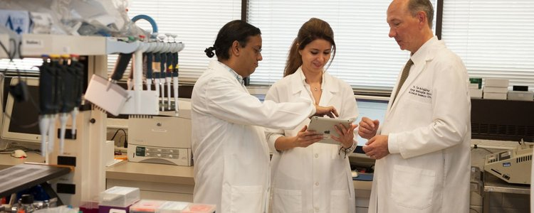 people_students-in-lab-with-teacher_landscape.jpg__750x300_q85_crop_subsampling-2_upscale.jpg