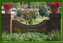 mellowbrook.jpg