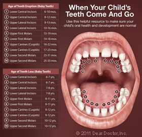 childrens-mouth-anatomy-thumb.jpg