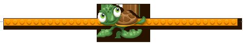 Divider-Turtle.png