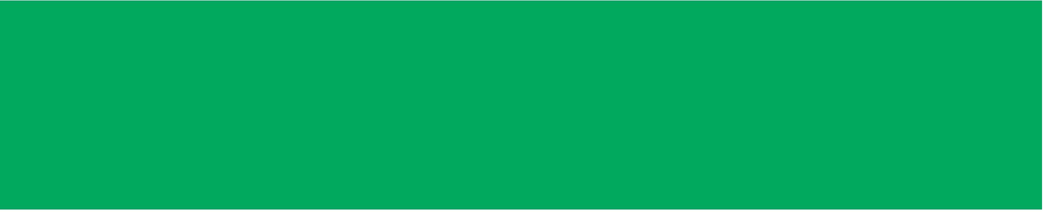SE_logo_horiz_Green.png