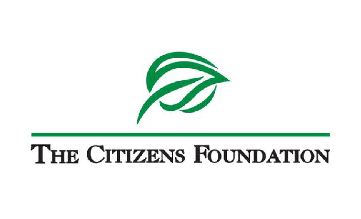 thecitizensfoundation.png