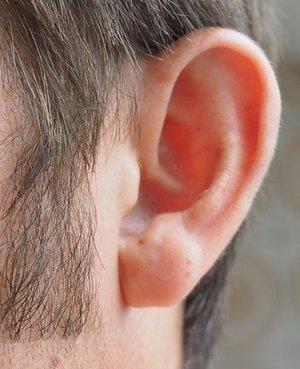 ear.jpeg