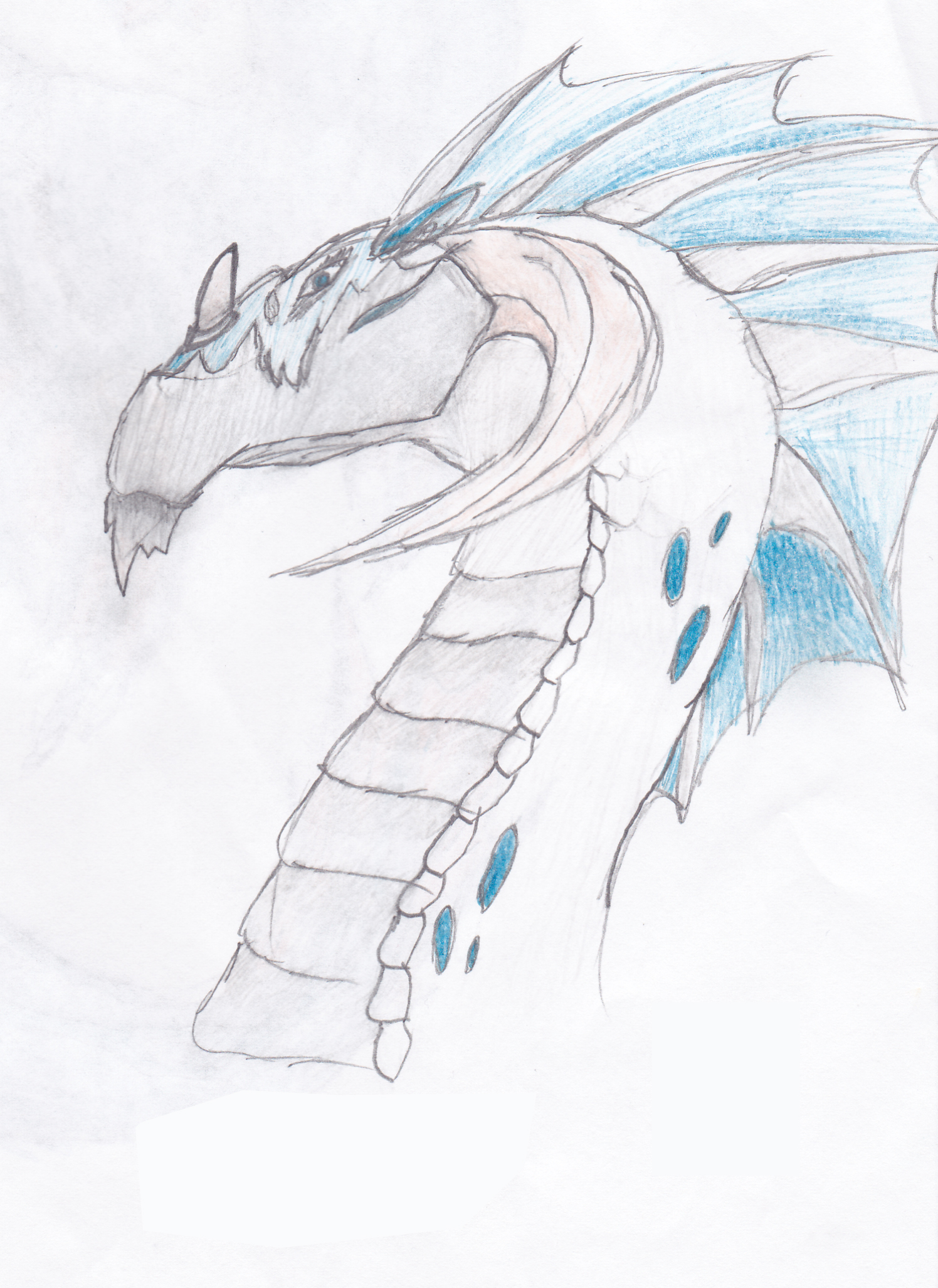 General Grey, Glacier Dragon