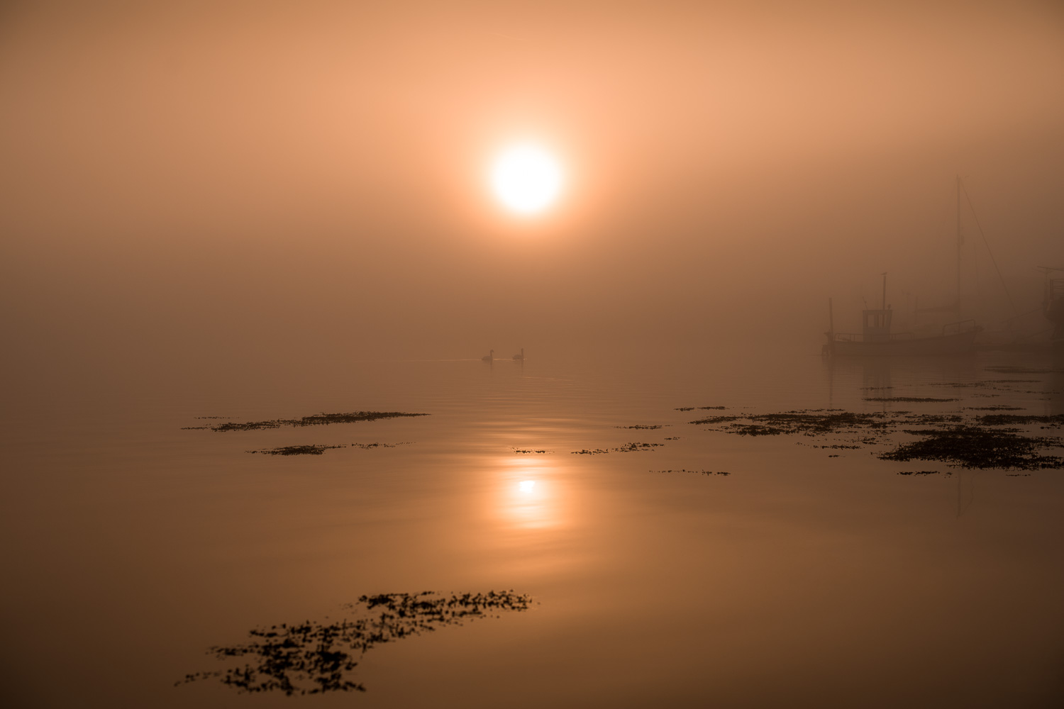 Bembridge Harbour_Misty_Sunrise_DSC_1621a_1500px_web.jpg