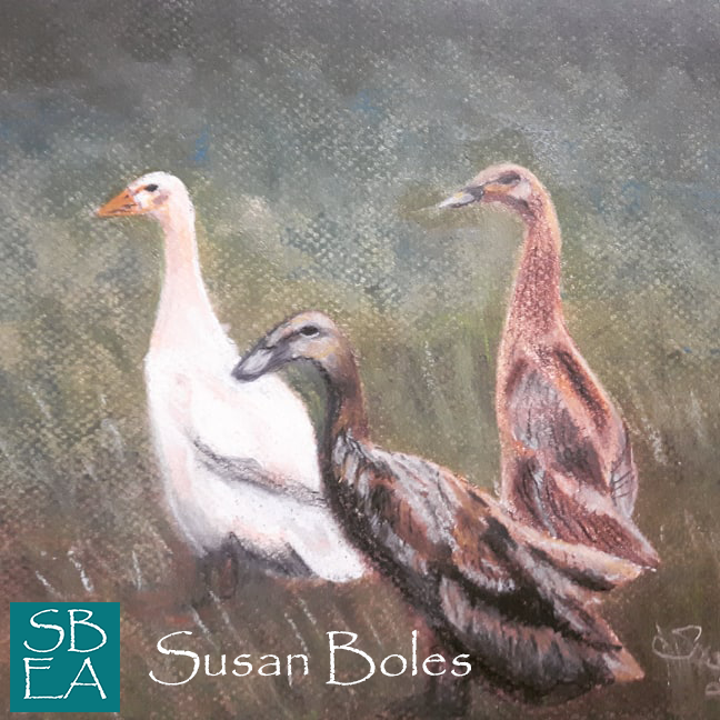 Runner ducks 9x12, Pastels on Pastel Paper