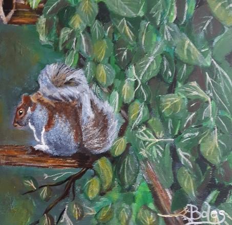 Squirrel Picture.jpg