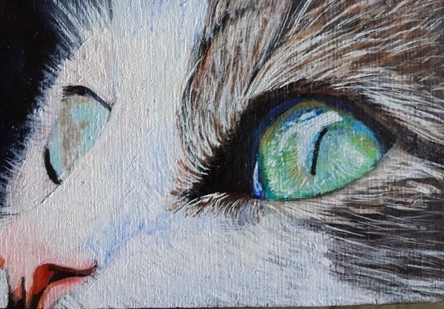 cat painting, Acrylic .jpg
