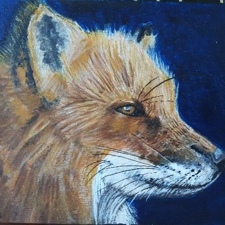 Fox Patience.jpg