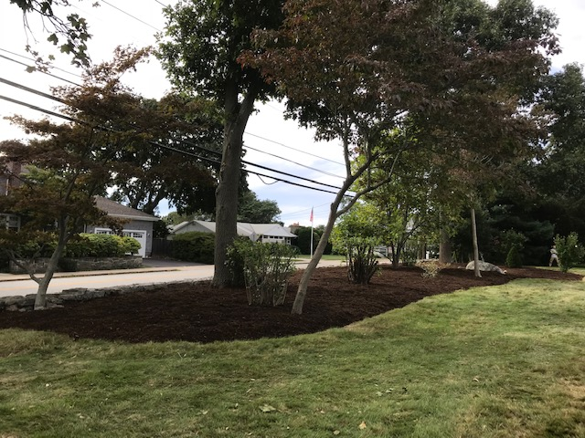 Plant Bed Maintenance with Mulching - After