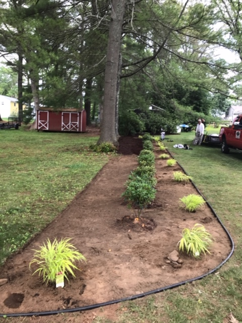 Plant Bed Installations 2