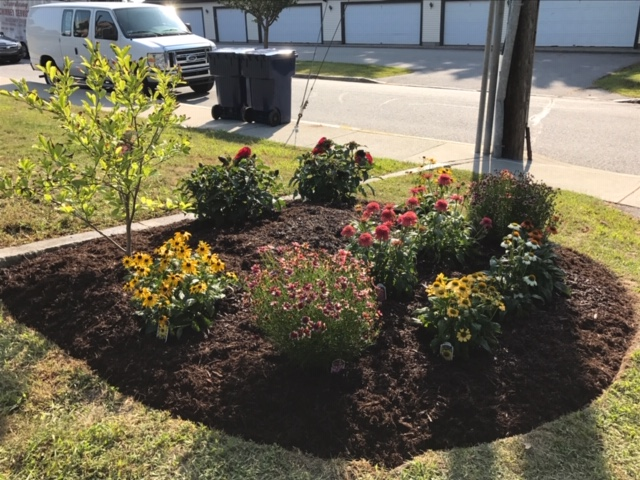 Small Plant Bed Installation 4
