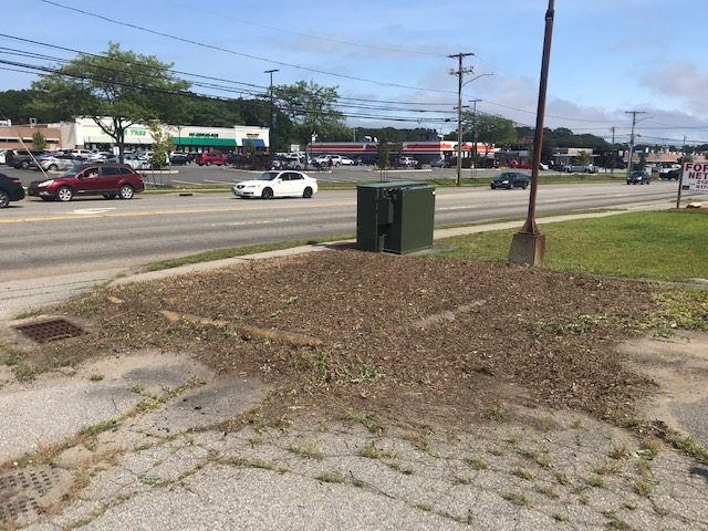 Vacant Lot Clean Up - After