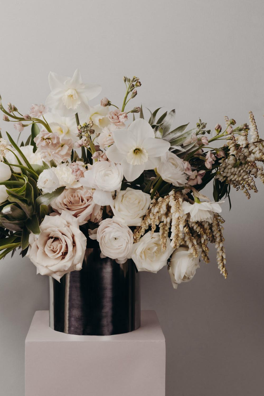 Narcissi Garden -