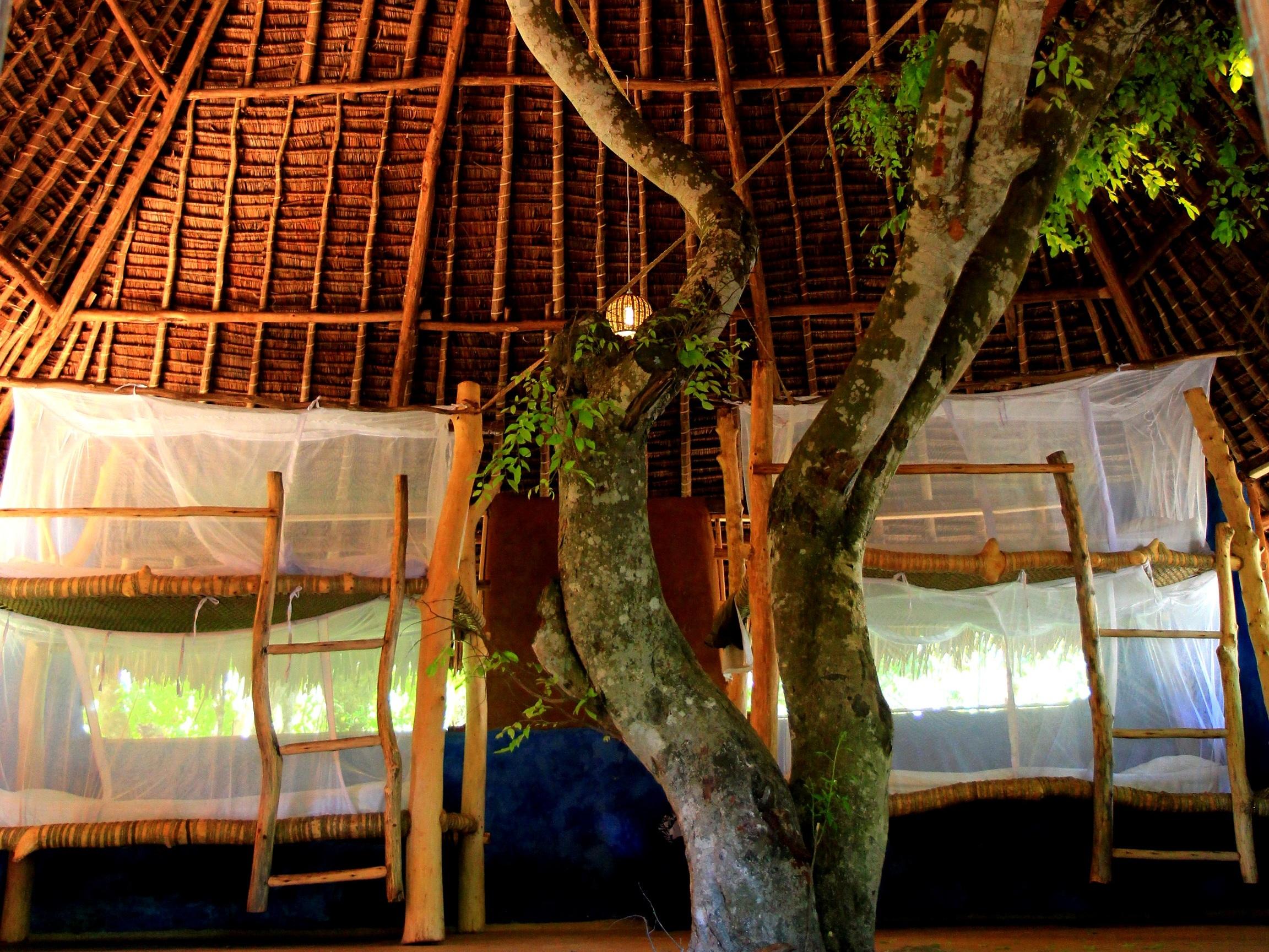 Accommodation Dorm - remote work and travel program.jpg