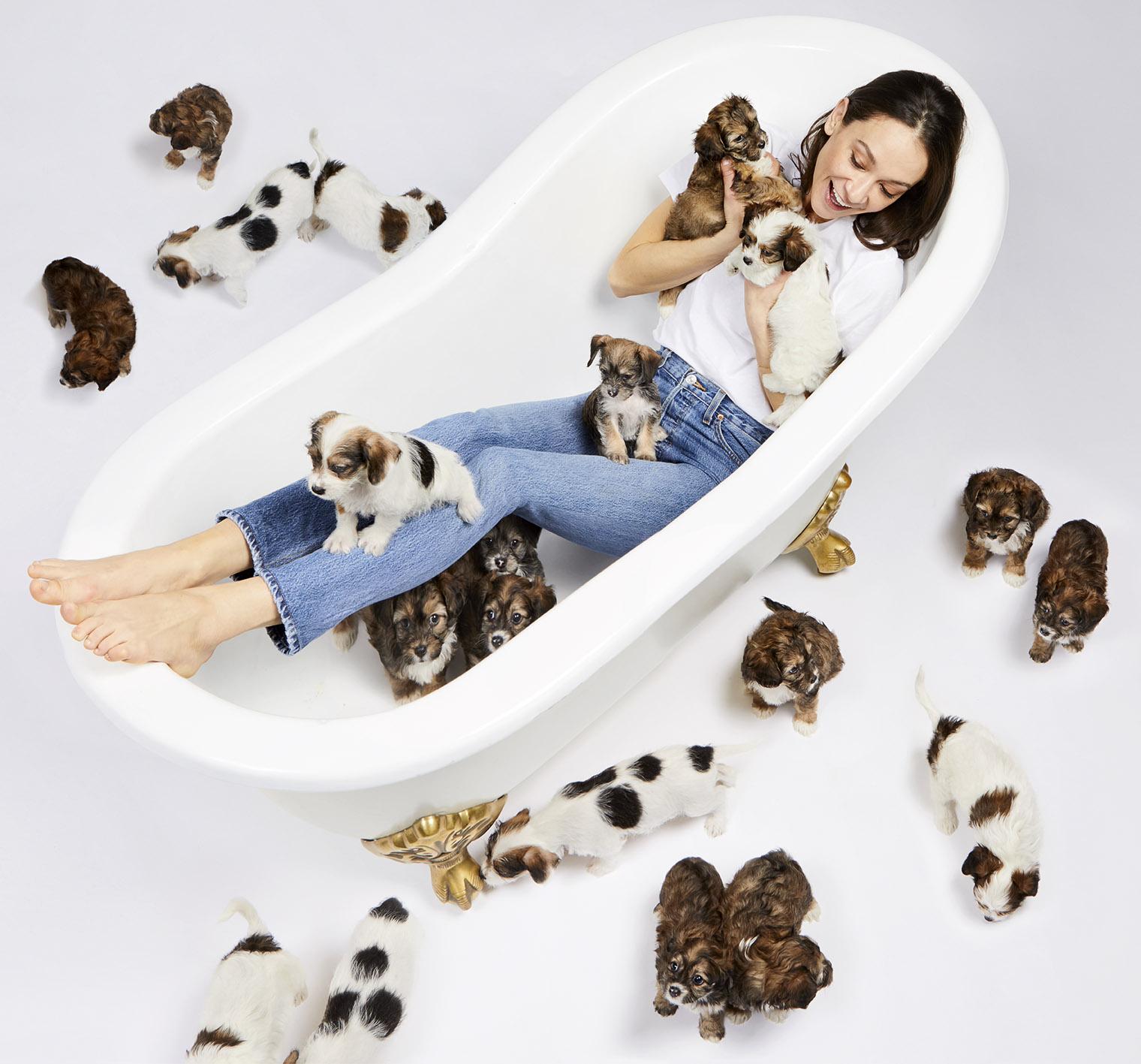Dogville-TubPuppies_Sm.jpg