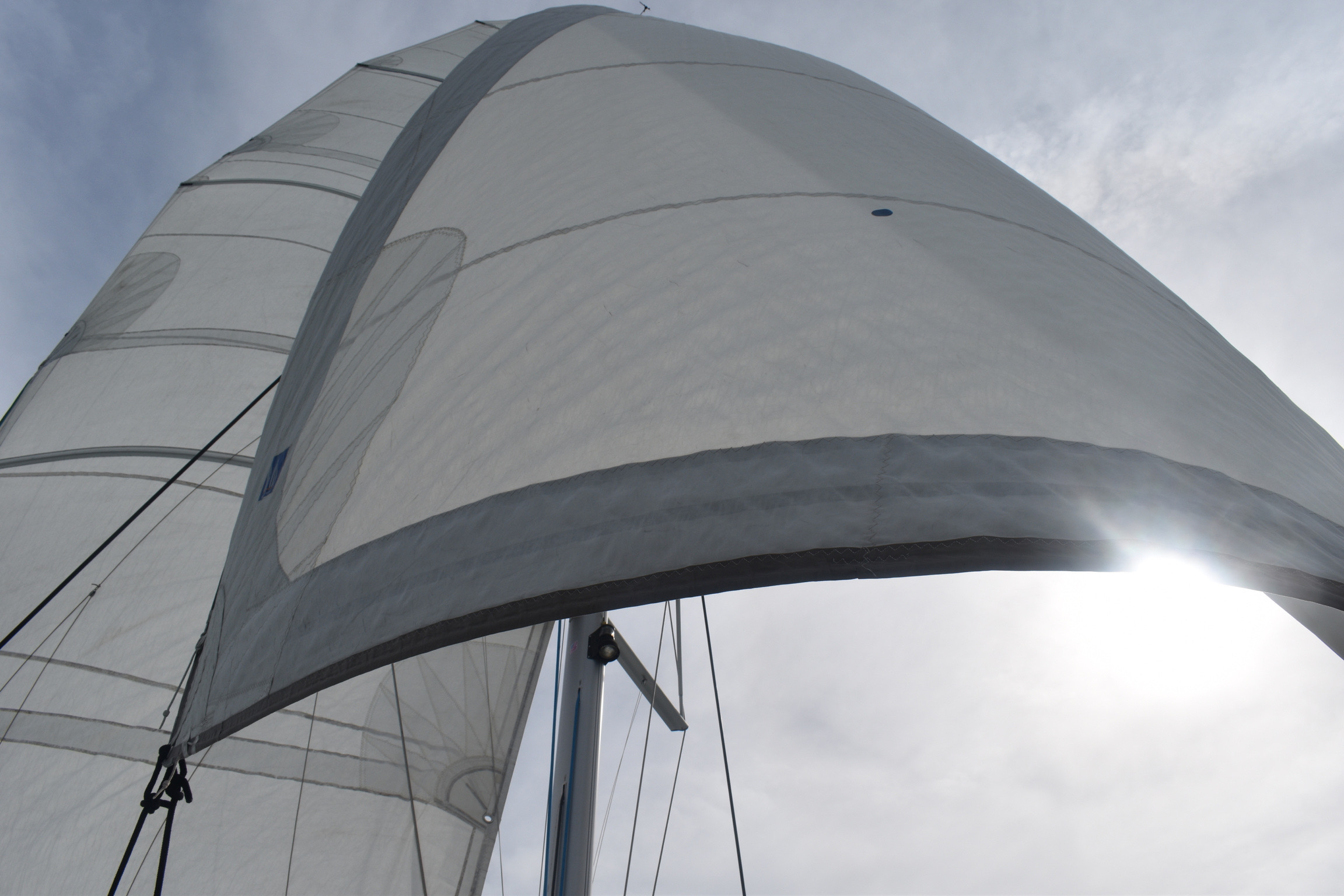 Luxury Day Sailing in St. Petersburg, FL