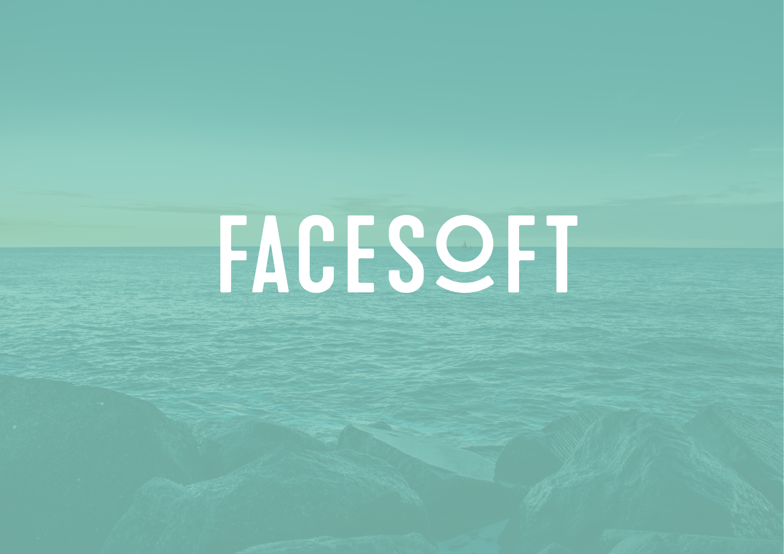 VIEW THE FACESOFT CASE STUDY