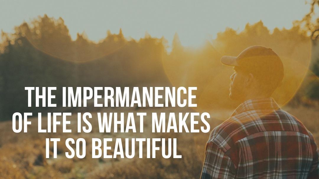 Ryan+Munsey+Impermanence+of+Life.jpg