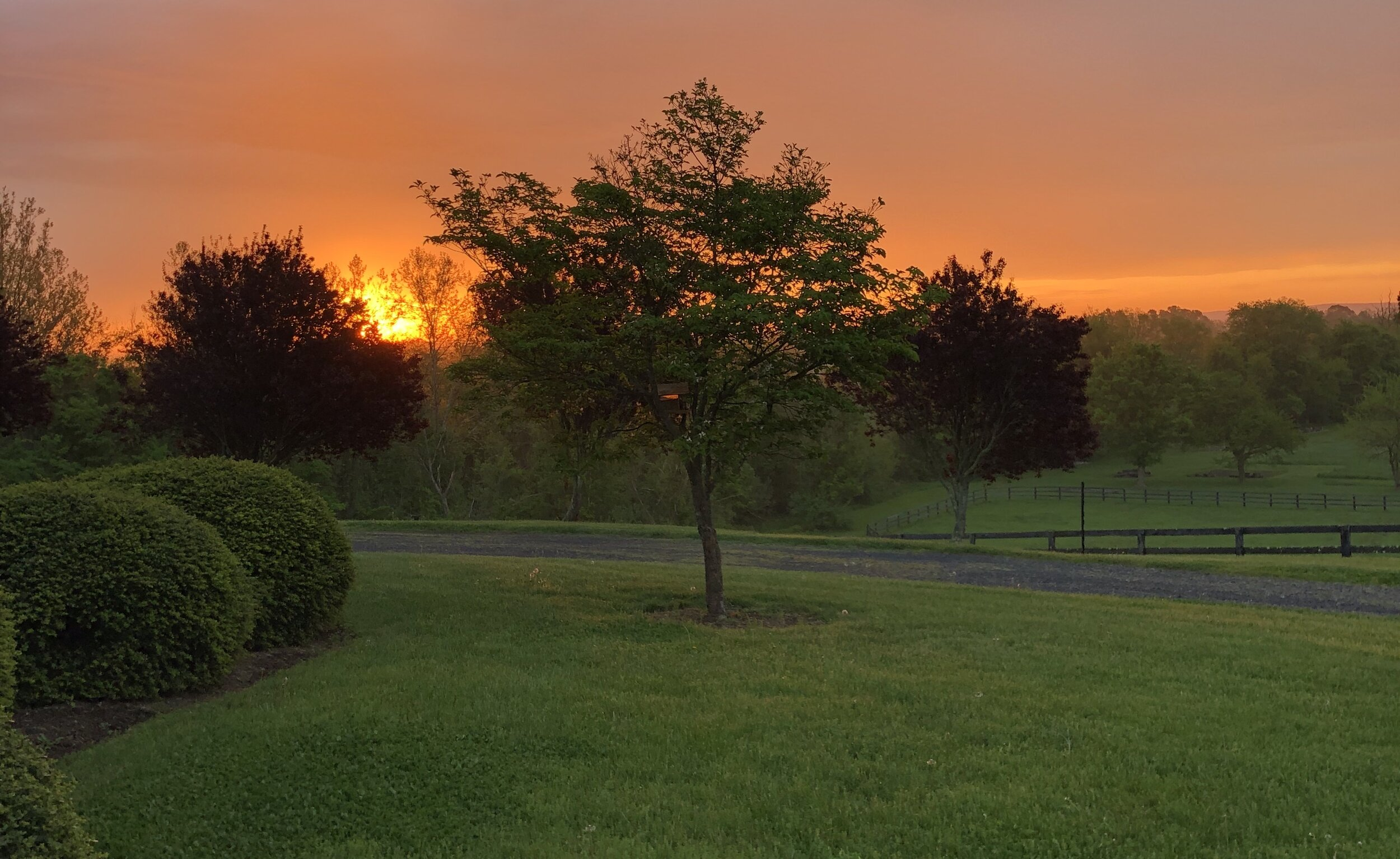 Peace Love Beauty Sunset.jpg
