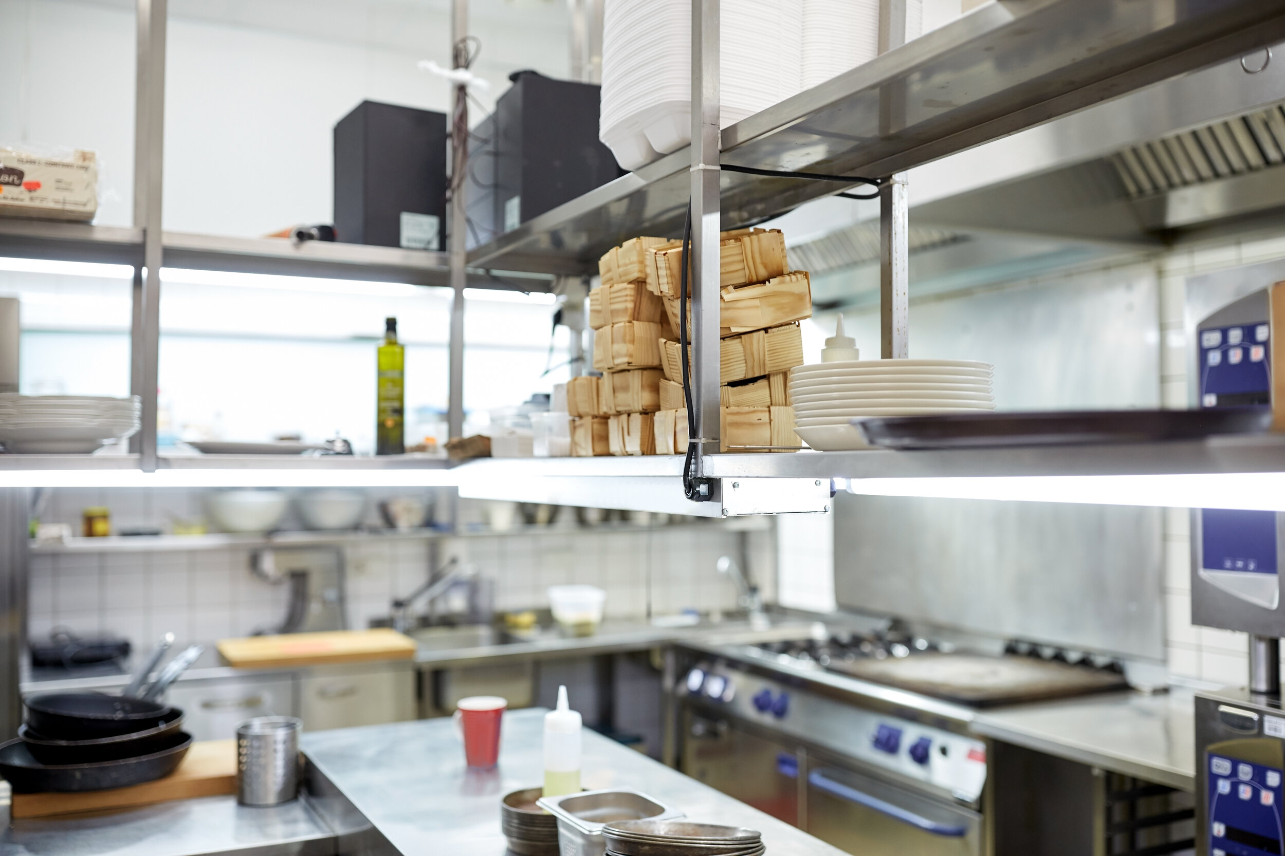 Food and Restaurant Pest Control -