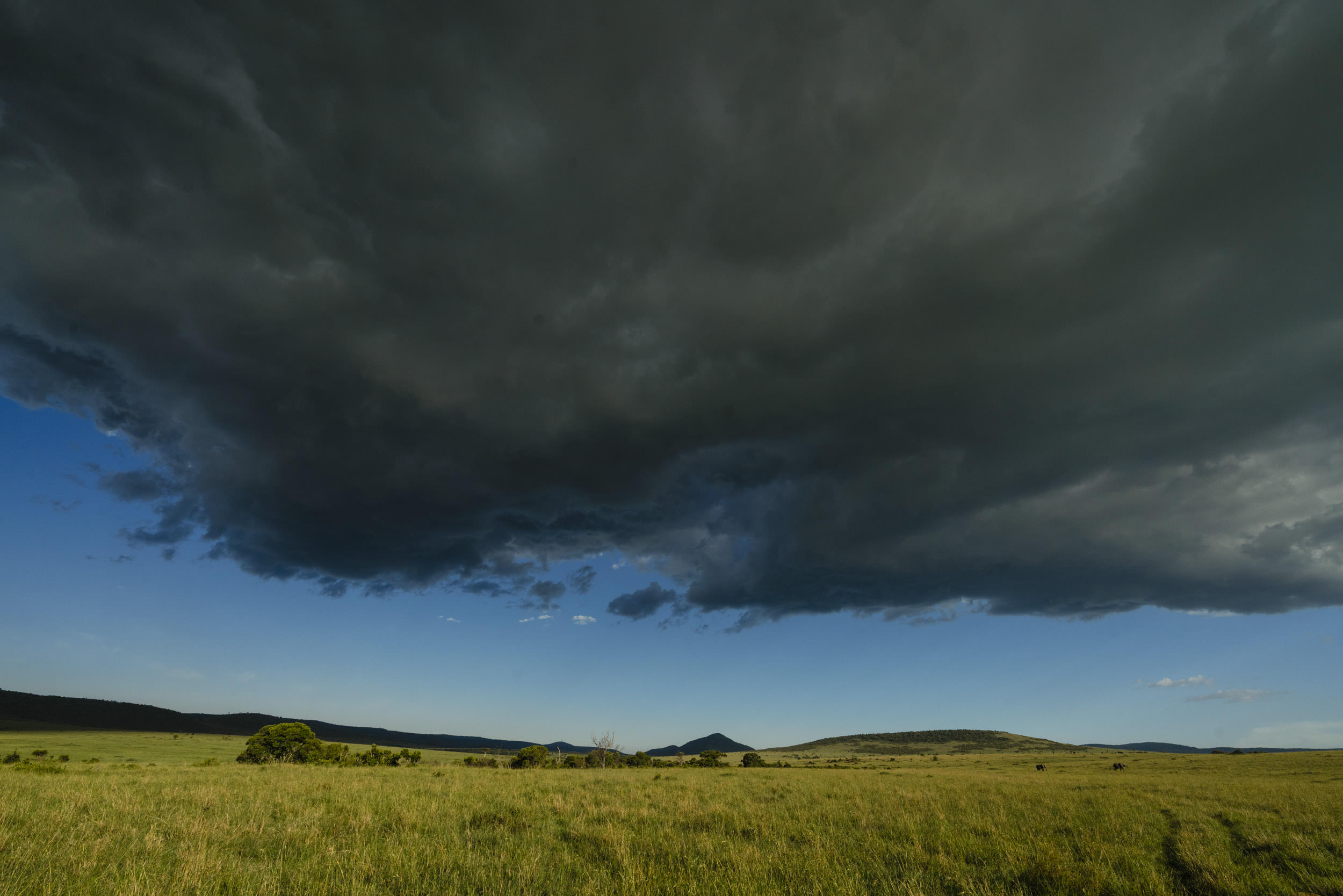 Stormy sky over masai mara.jpg