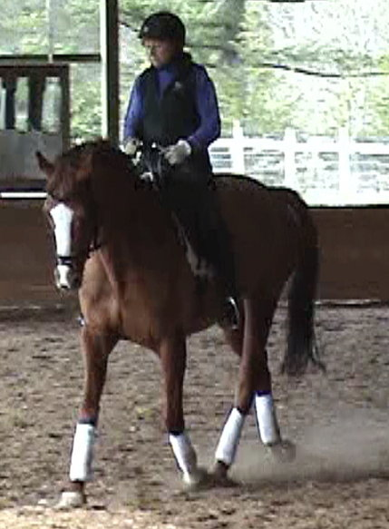 Janet riding mare, collected, in arena