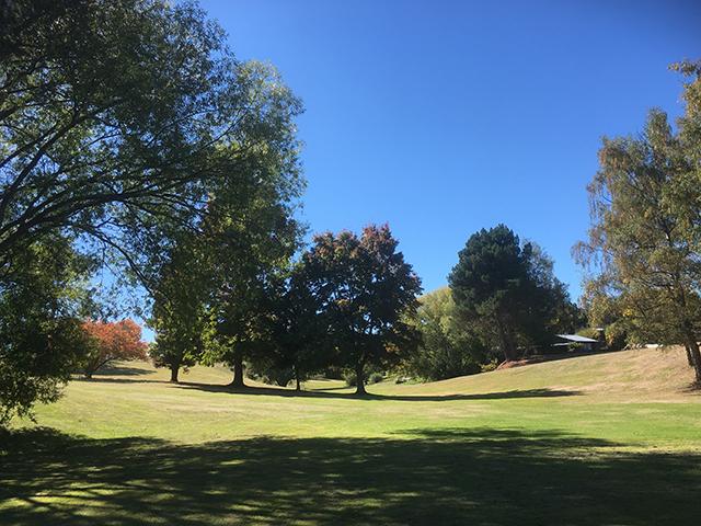9 hole golf_04.jpg