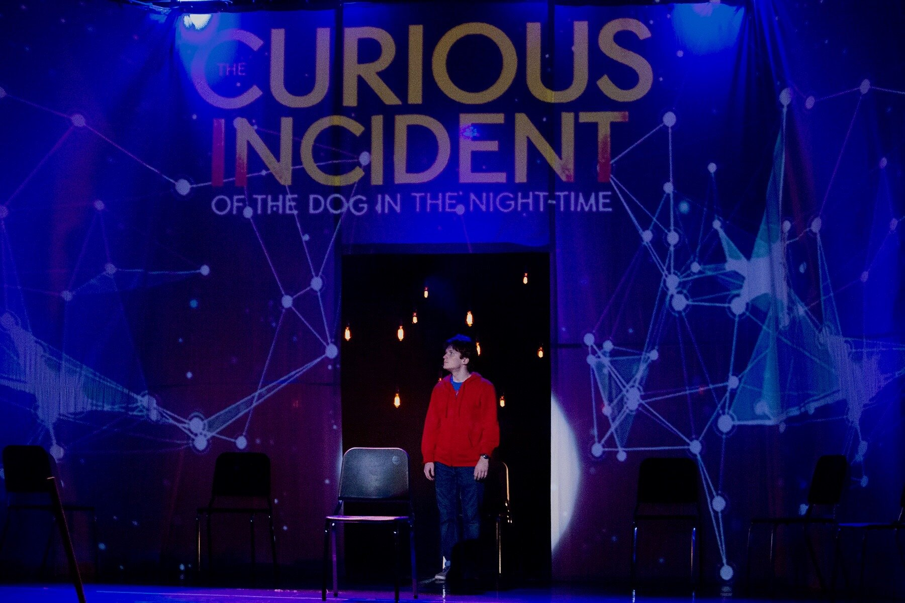 THE CURIOUS INCIDENT OF THE DOG IN THE NIGHT-TIME (2019)