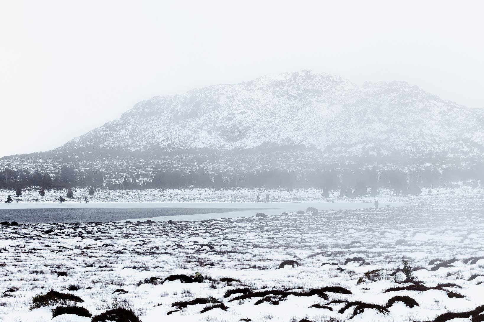 pine-lake-tas.jpg