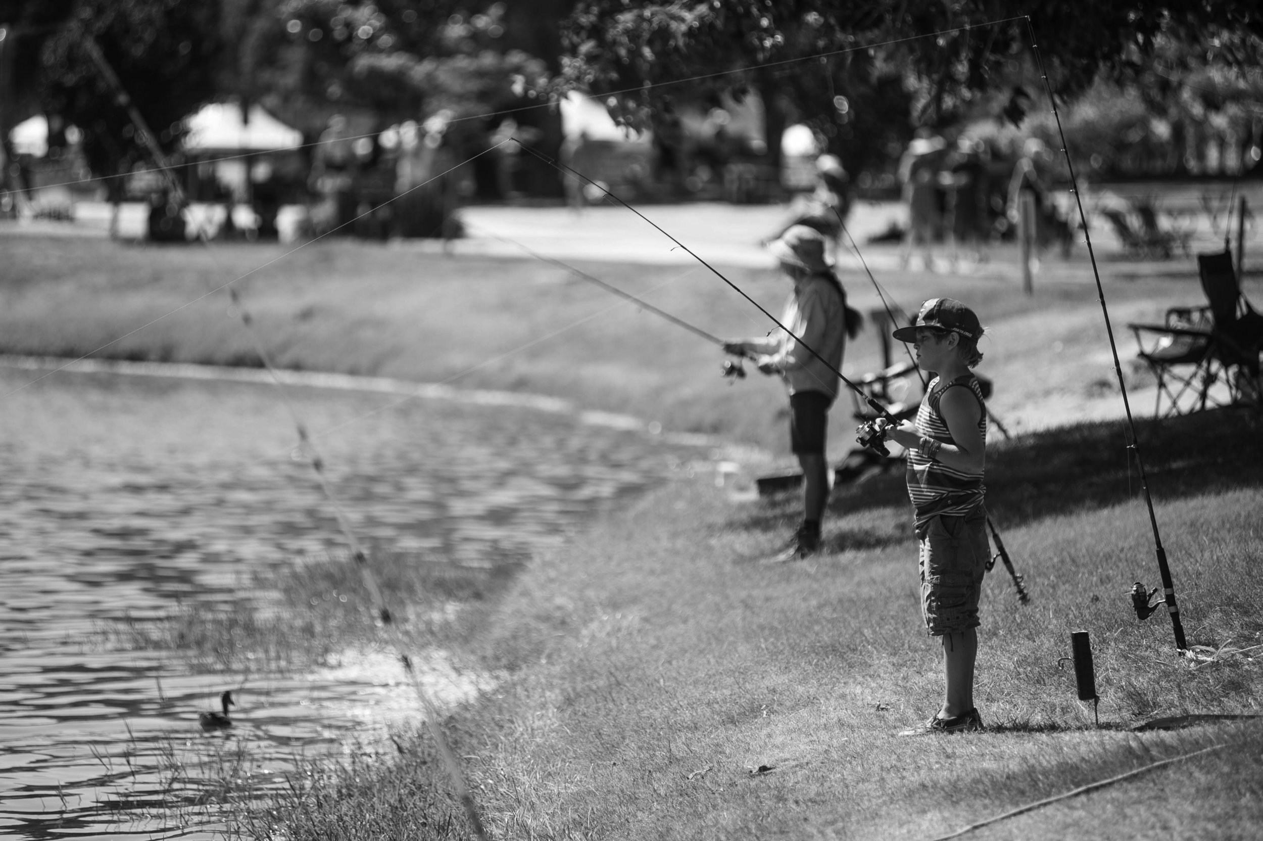 Fishing - Our Festival grounds offer two lakes for year-round catfish and trout fishing. So bring your poles and tackle. A State of California Fishing License is required to fish at the park and can be purchased online at the California Department of Fish and Game or at local sporting goods retailers such as BassPro Shops or Big 5 Sporting Goods.