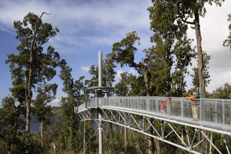 Hokitika Treetops Walkway -