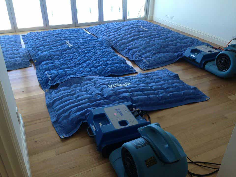 Drymatic Floor Mats14.jpg