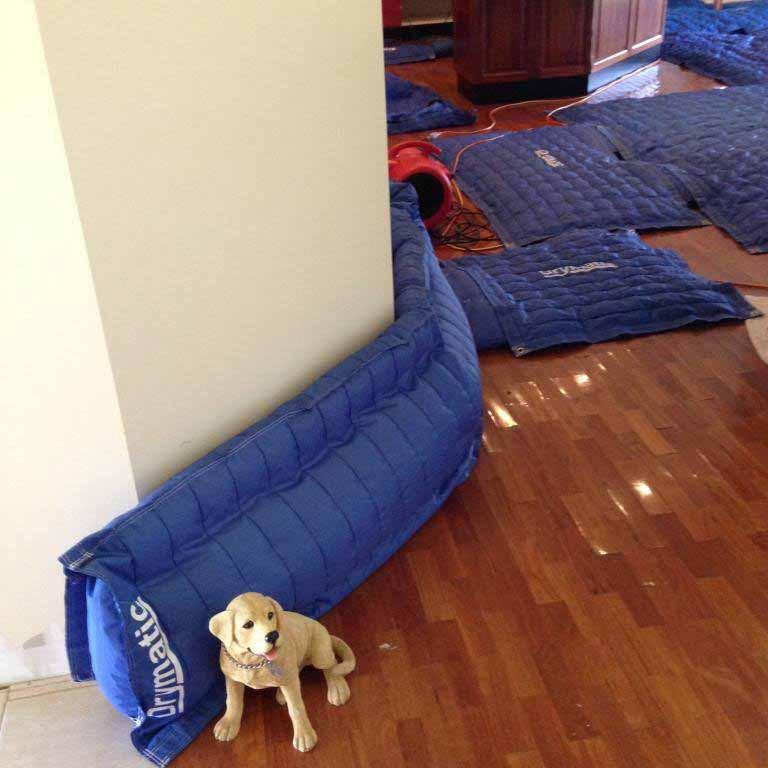 Drymatic Floor Mats31.jpg