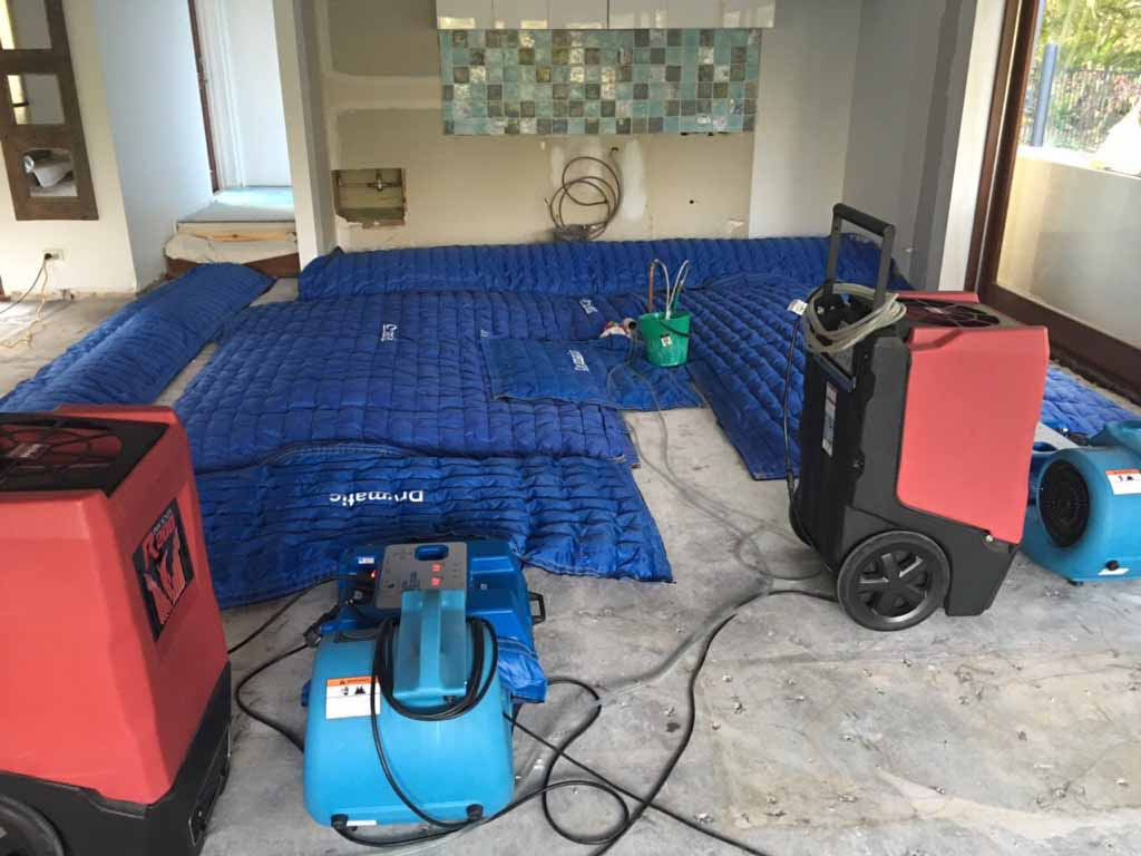 Drymatic Floor Mats45.jpg