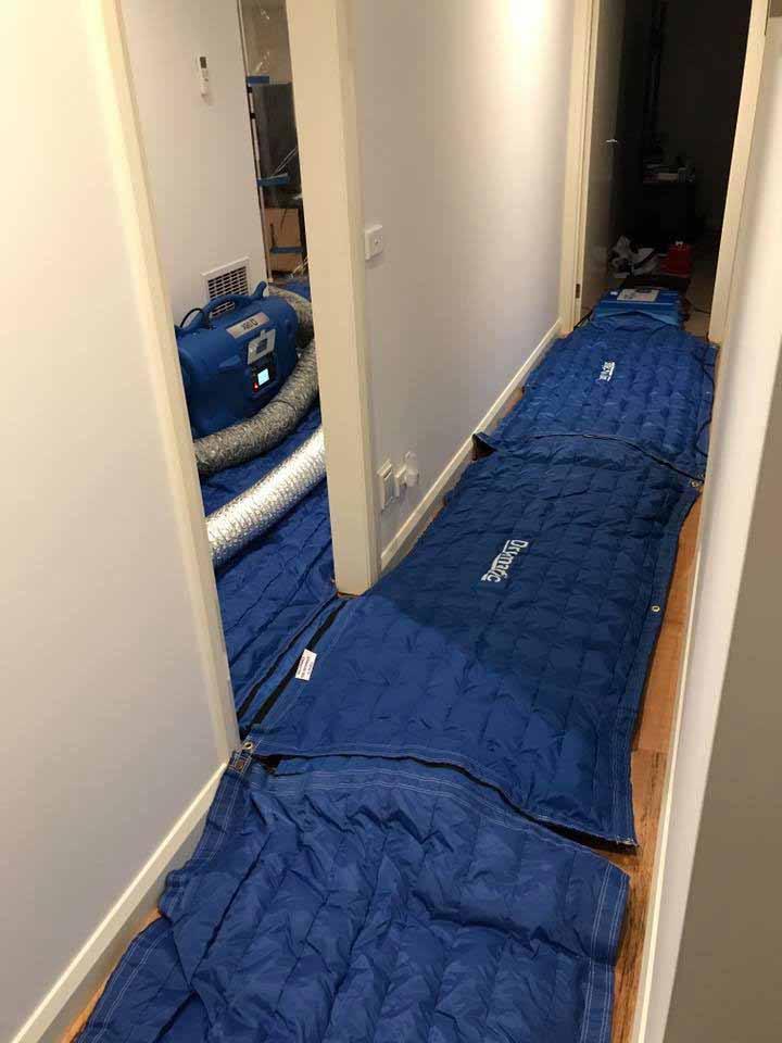 Drymatic Floor Mats118.jpg