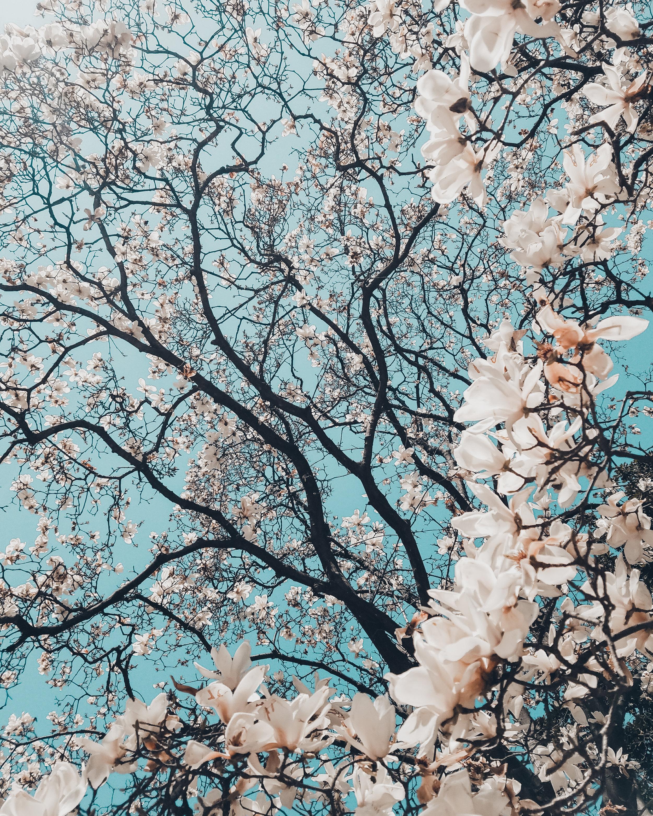 April Lift Letter -