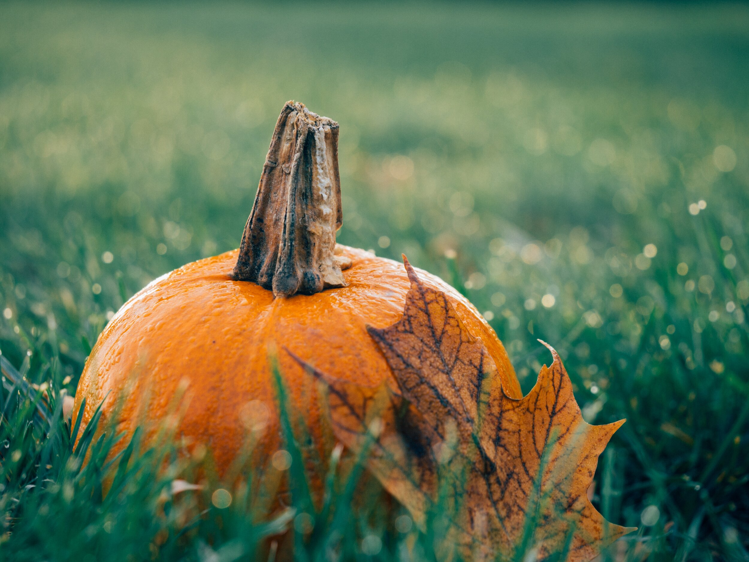 October Lift Letter -