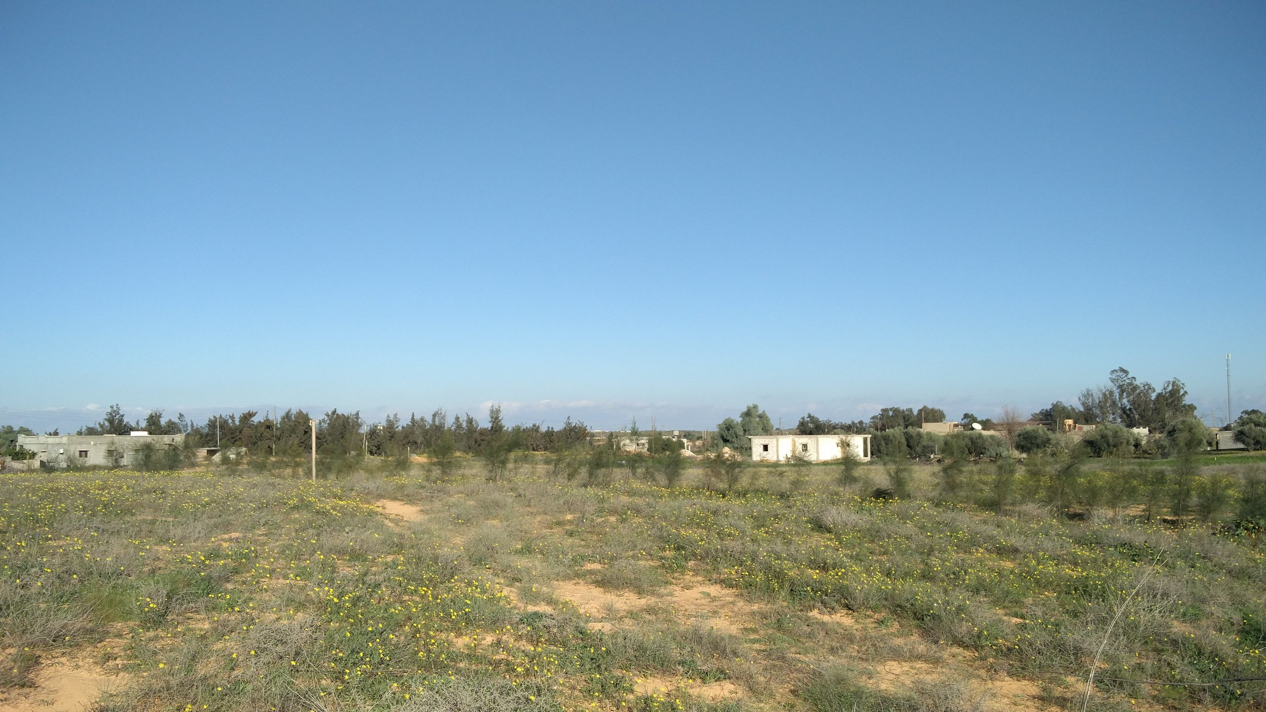 Image of the view from a ranch in the poet's hometown in Libya.