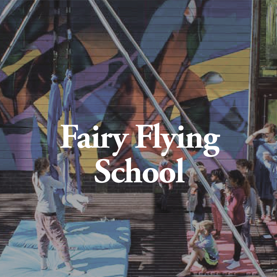 LineUp Images_Fairy Flying School.jpg