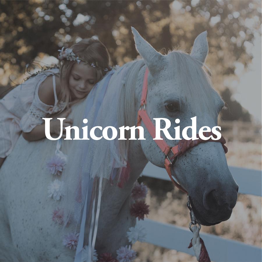 LineUp Images_Unicorn Rides.jpg
