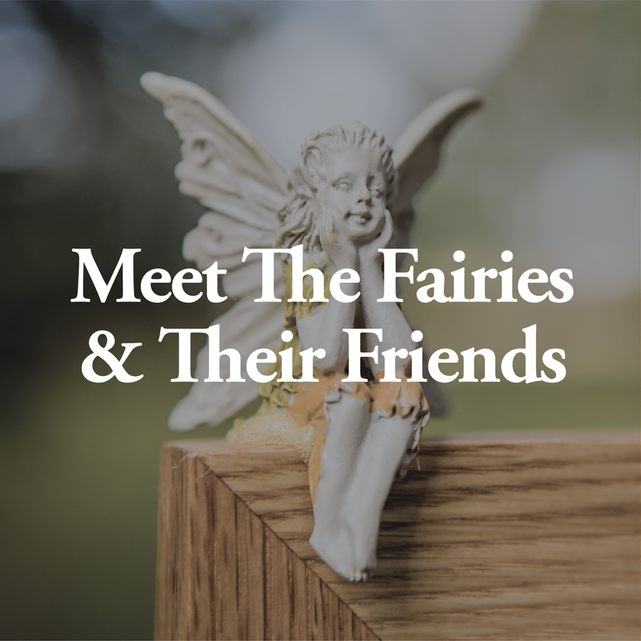 LineUp Images_Meet The Fairies.jpg