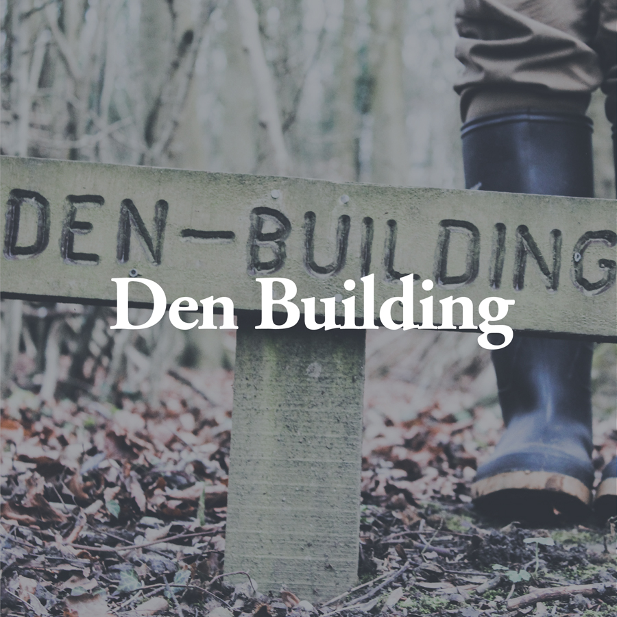 LineUp Images_Den Building.jpg