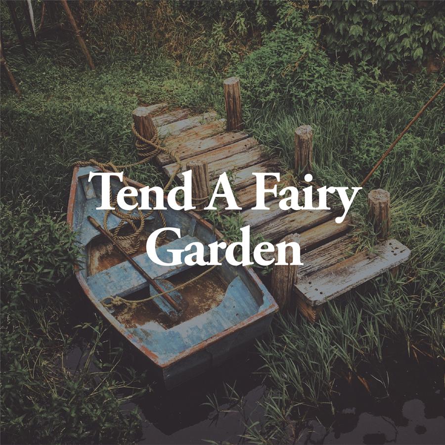 LineUp Images_Tend A Fairy Garden.jpg