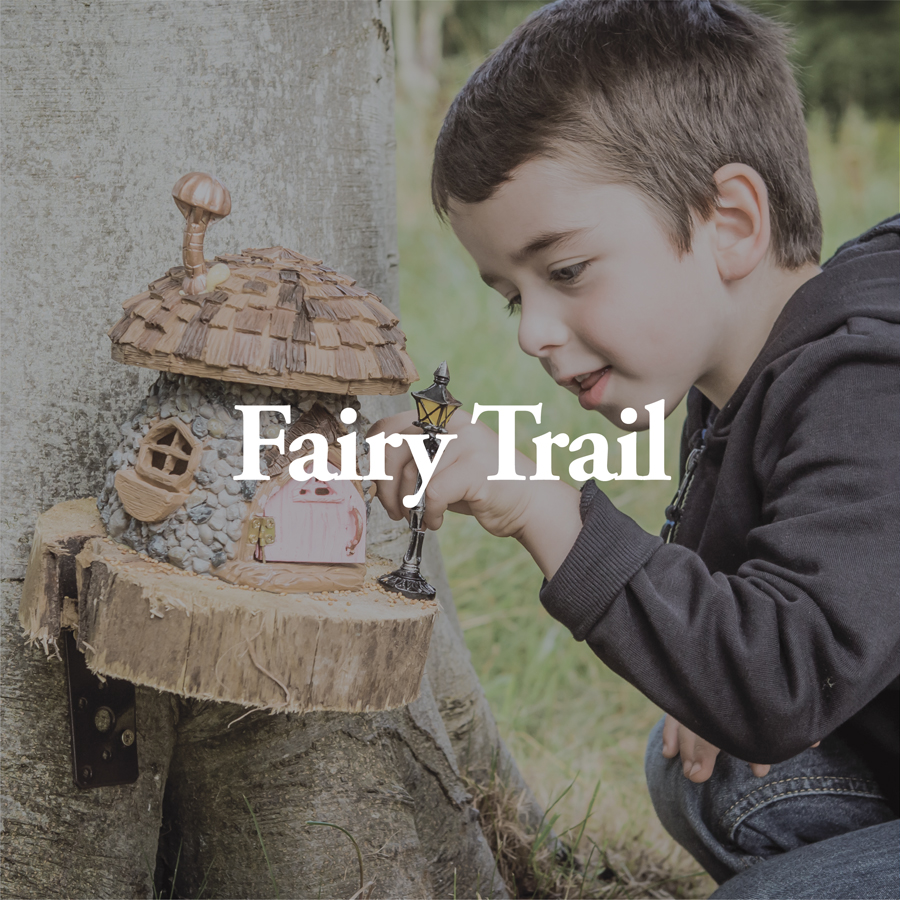 LineUp Images_Fairy Trail.jpg