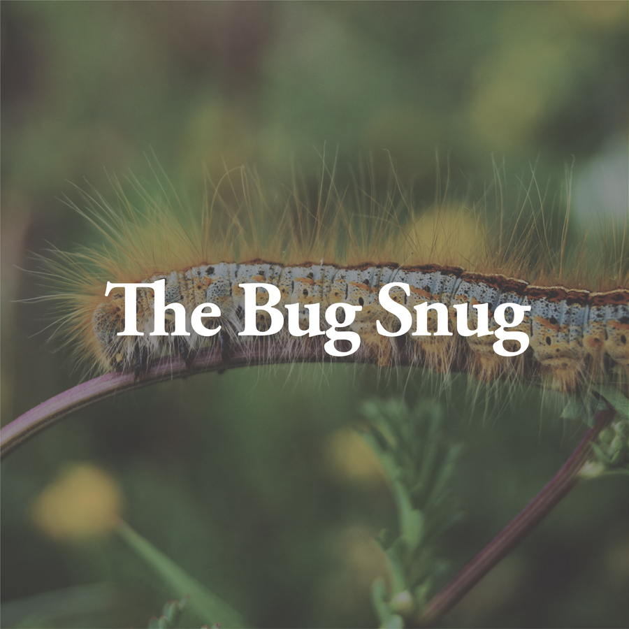 LineUp Images_The Bug Snug.jpg